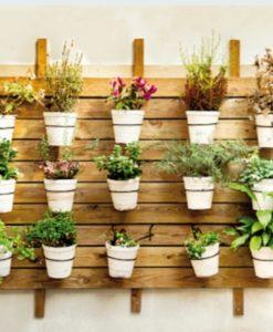 Kertészeti terméket csomagolnék