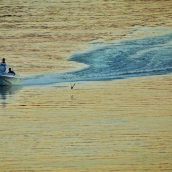 Baja, millerpack csomagolóanyag blog, bajai programok, bajai strand, vízparti élet, Duna, Kádár-sziget, Sugovica, szabadstrand, Szezonnyitó Strandfesztivál
