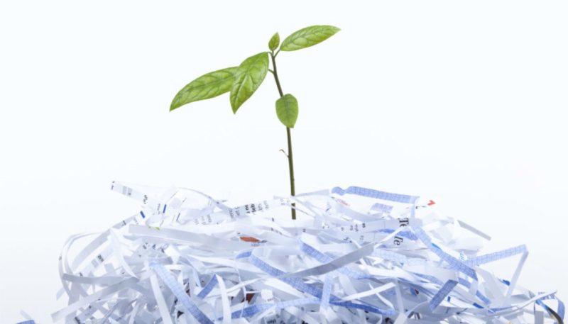 papír, környezetvédelem, papírgyártás, újrahasznosítás