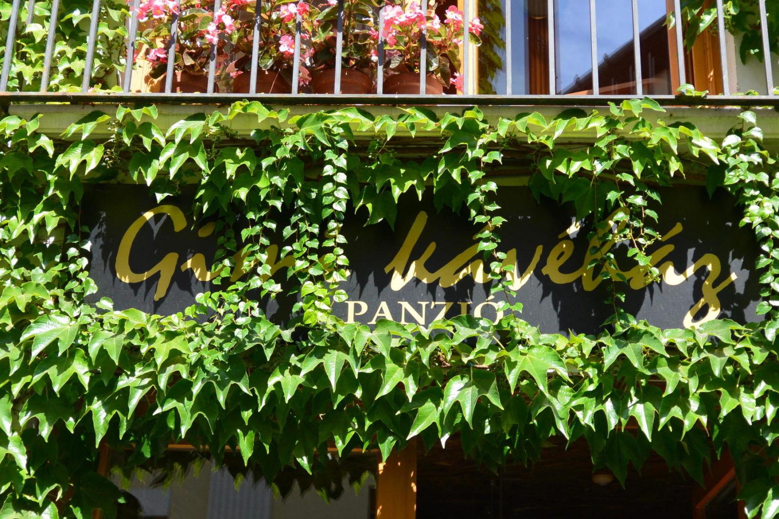 Gimi Kávézó, Baja, ha Baján jársz, bajait ajánlunk