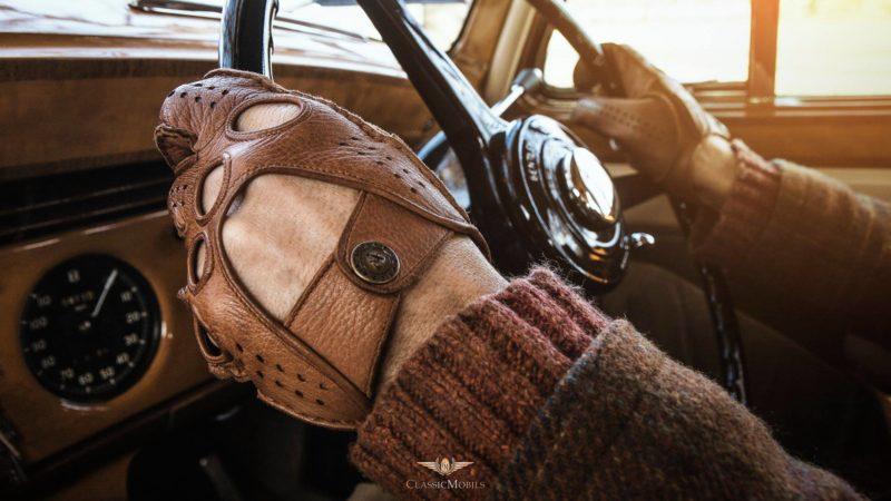 Alpa Gloves