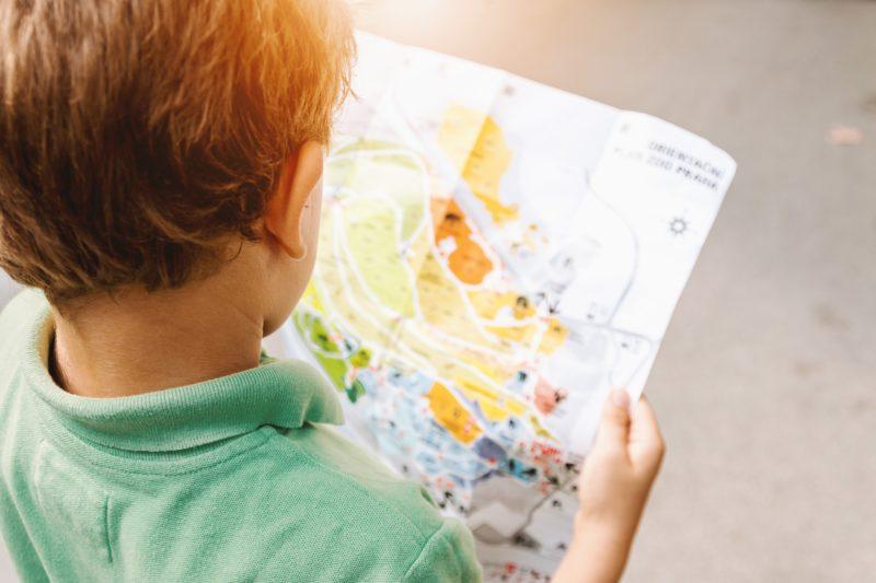 program, programajánló, családdal, gyerekekkel, állatkert, kalandpark, múzeum, élményfürdő