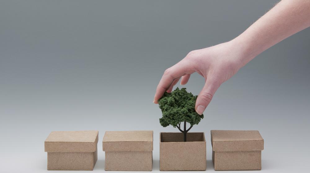környezetbarát, csomagolás, kartondoboz, újrahasznosított, újrahasznosítható